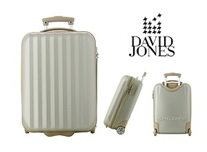 david-jones-rigide-bagage-cabine
