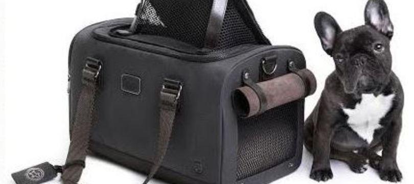 bagage pour animaux pour voyager avec votre animal en toute s r nit ma valise vacances. Black Bedroom Furniture Sets. Home Design Ideas