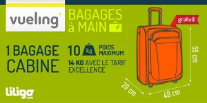 poid du bagage a main